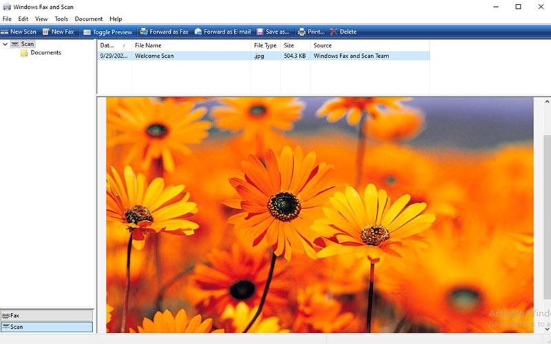 Cửa sổ New Scan