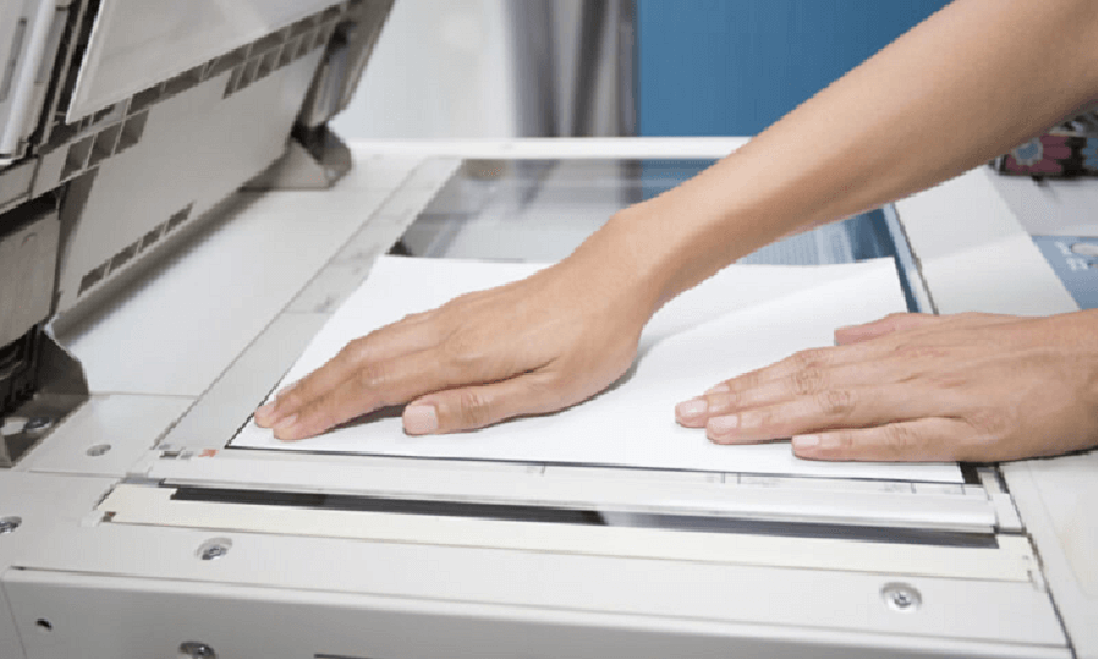 Đặt giấy chuẩn trong khay in